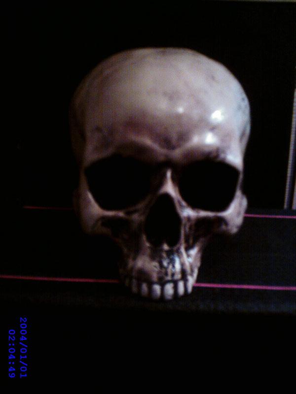 Der mutmaßliche Original-Schädel von MAD DILLON